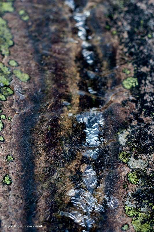 Bohuslän©JudithdenHollander5766