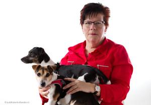 Portretserie 'Mens met geliefd huisdier' | 2 Jack Russell Terriers | Fotostudio Judith den Hollander, Haarlem-Noord.