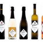 15x wijn Wijngaard St. Martinus | Mooie Nederlandse wijn | Wijngaarden Zuid-Limburg | Dutch wine.
