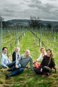 Team Domein Holset | Groepsfoto in de wijngaard.