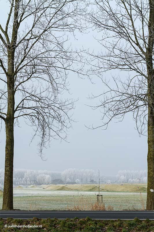 Winterlandschap   Nederland   Hoofddorp - fotografie Judith den Hollander.