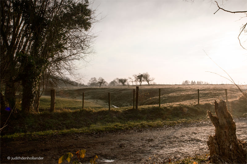 New Dutch Views by Fine Art Photographer Judith den Hollander. This is a landcape photo made in South-Limburg.